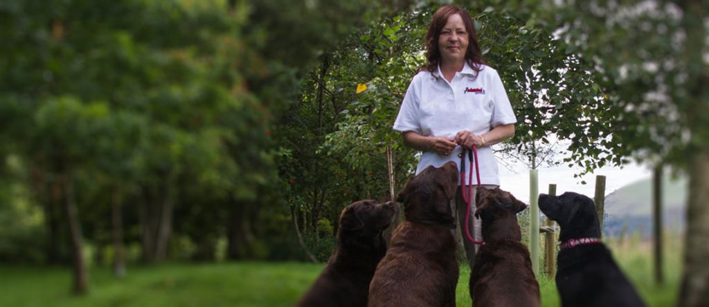 About Redders Pet Care